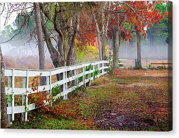 Coosaw Horse Fence Canvas Print by Scott Hansen