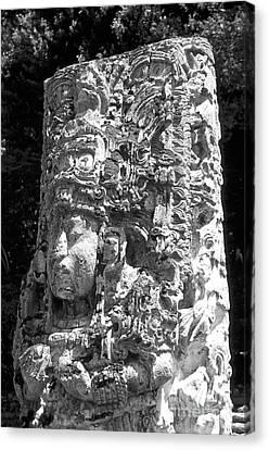 Copan Stela Honduras Canvas Print by John  Mitchell
