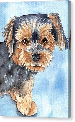 Copper Yorkie Yorkshire Terrier Dog Watercolor Canvas Print by Cherilynn Wood