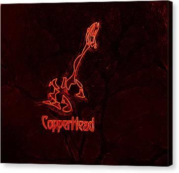 Copperhead Canvas Print by Rosemarie E Seppala