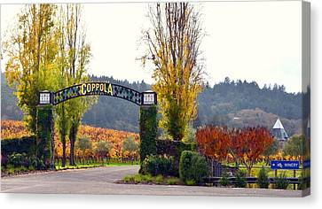Coppola Winery Sold Canvas Print by Antonia Citrino