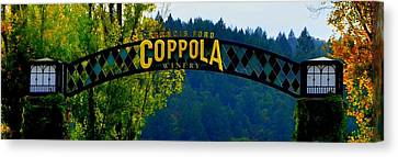 Coppola Winery Canvas Print - Coppola Winery Two by Antonia Citrino