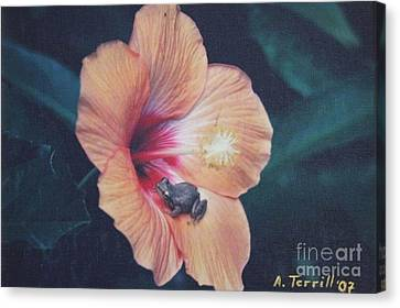 Canvas Print featuring the photograph Coqui  by The Art of Alice Terrill