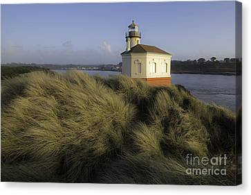 Coquille River Light House Canvas Print by Tim Moore