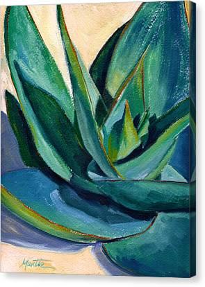 Coral Aloe 2 Canvas Print