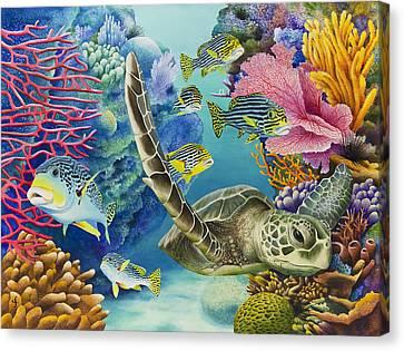 Coral Canyon Canvas Print