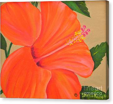 Coral Delight - Hibiscus Flower Canvas Print by Shelia Kempf