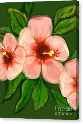 Coral Hibiscus  Canvas Print by Christine Fournier