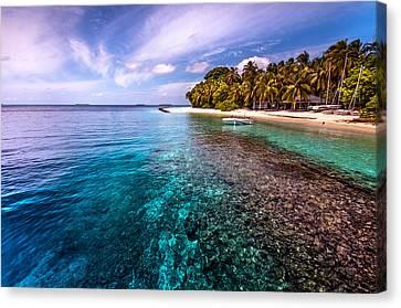 Coral Reef At Royal Island Resort Canvas Print