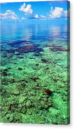 Coral Reef Near The Island At Peaceful Day. Maldives Canvas Print by Jenny Rainbow