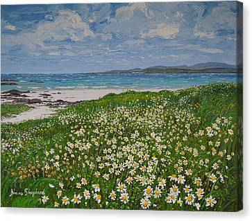 Coral Strand On A Windy Day Connemara Canvas Print by Diana Shephard