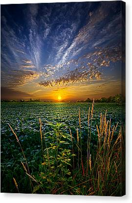 Coraline Canvas Print by Phil Koch
