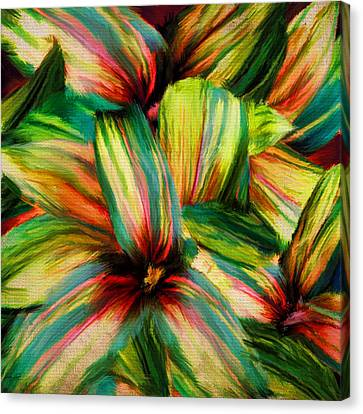 Lush Colors Canvas Print - Cordyline by Lourry Legarde