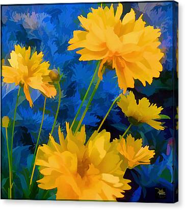 Coreopsis - Yellow And Blue Canvas Print by Douglas MooreZart