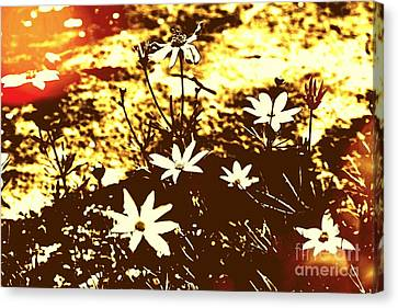 Canvas Print featuring the photograph Coriopsis by Denise Tomasura