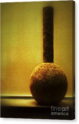 Cork Vase Canvas Print by Darla Wood