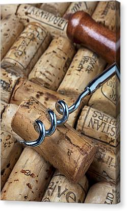 Corkscrew On Corks Canvas Print by Garry Gay