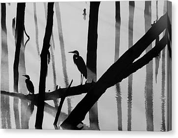 Cormorant And The Heron  Bw Canvas Print