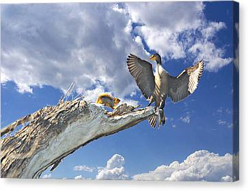 Cormorant Close Encounter With Tree Squirrel 1 Canvas Print by Roy Williams