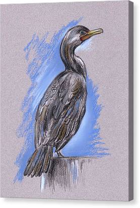 Cormorant Canvas Print by MM Anderson