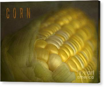Nosyreva Canvas Print - Corn by Elena Nosyreva