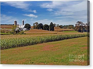 Corn Farmer Canvas Print by Skip Willits