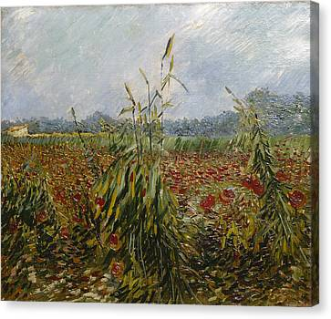 Corn Fields And Poppies, 1888 Canvas Print