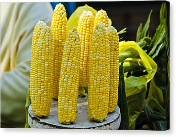 Corn On Display Canvas Print