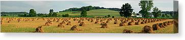 Amish Country Canvas Print - Corn Shocks, Amish Country, Ohio, Usa by Panoramic Images