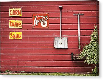Corn. Tomatoes. Squash - Americana - Old Farm Signs Canvas Print