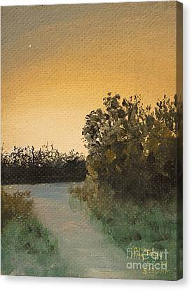 Daviess County Canvas Print - Cornfield At 530am by Art By Tolpo Collection