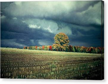 Cornfield On Argentine Road Canvas Print by James Welch
