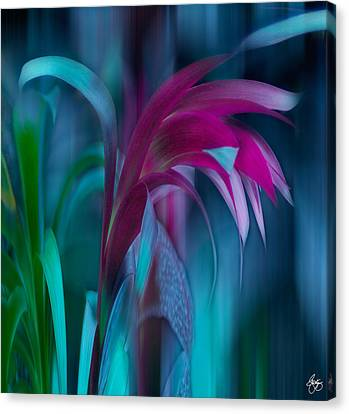 Canvas Print featuring the photograph Cornflower Dreams Mindscape by Wayne King