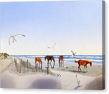 Corolla Beach Canvas Print