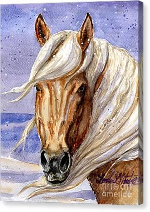 Corona Band Stallion Of Sand Wash Basin Hma Canvas Print