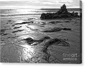 Corona Del Mar Coast - Black And Awhite Canvas Print by Gregory Dyer