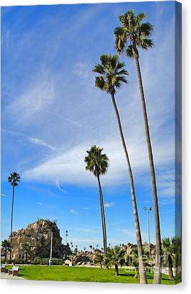 Corona Del Mar State Beach - 01 Canvas Print by Gregory Dyer