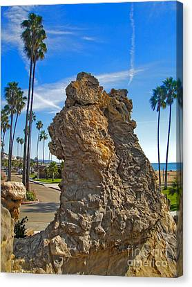 Corona Del Mar State Beach - 02 Canvas Print by Gregory Dyer