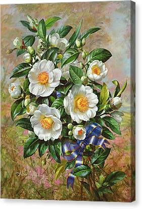 Coronation Camelia From The Golden Jubilee Series Canvas Print by Albert Williams