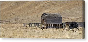 Corral Canvas Print by Dee Cresswell