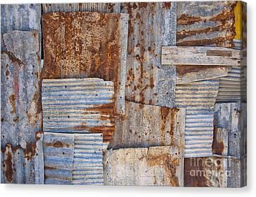 Corrugated Iron Background Canvas Print by Antony McAulay