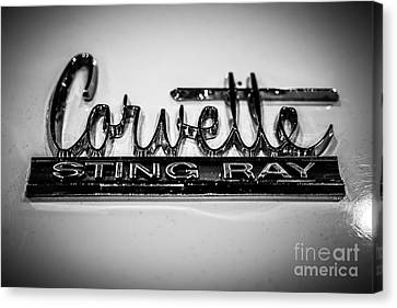 Sting Ray Canvas Print - Corvette Sting Ray Emblem by Paul Velgos