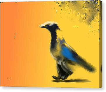 Corvus Out For A Walk Canvas Print