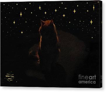 Cosmic Kitty Canvas Print