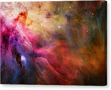 Cosmic Orion Nebula Canvas Print by Celestial Images