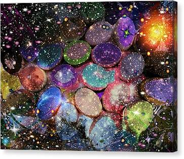 Cosmic Ovule Canvas Print