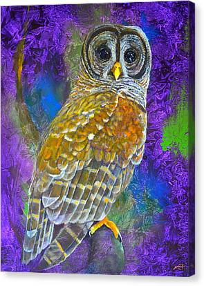 Cosmic Owl Canvas Print by AnnaJo Vahle