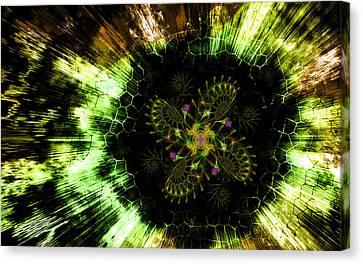 Cosmic Solar Flower Fern Flare Canvas Print by Shawn Dall