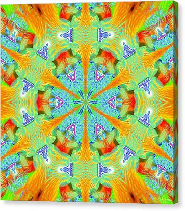 Cosmic Spiral Kaleidoscope 41 Canvas Print by Derek Gedney