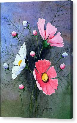 Cosmos  Canvas Print by Jo Appleby